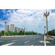 南京道路路灯项目