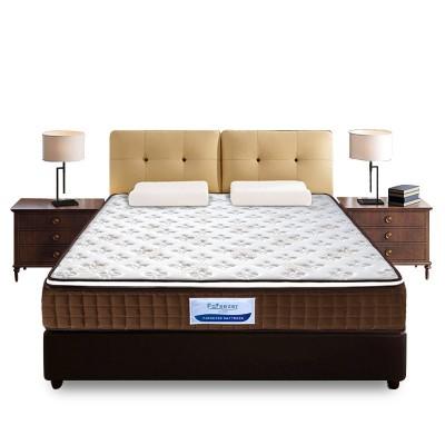 床垫棕垫家用棕榈床垫正品天然3e环保席梦思床垫批发定制