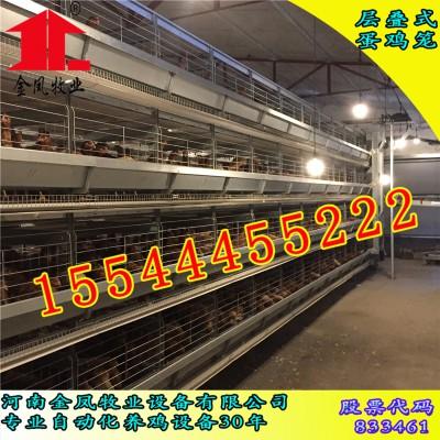 广州  金凤鸡笼 4列6层 立式鸡笼厂家