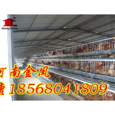合肥  金凤鸡笼 3列4层 履带清粪鸡笼