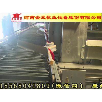金凤鸡笼4列8层 小型层叠式鸡笼 长沙 最新报道
