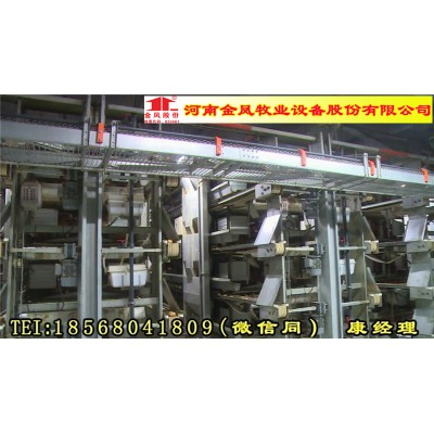 金凤鸡笼5列6层 蛋鸡设备 成都 厂家直销