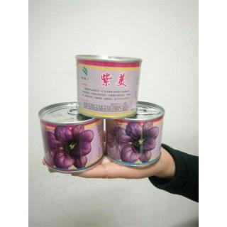 紫油菜种子,彩色观赏食用油菜种子