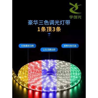 宇创批发12V贴片led灯带内置IC炫彩单点单控软灯条可定制