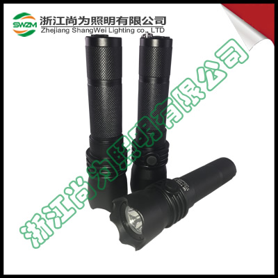 SW2102防爆强光电筒_LED3W