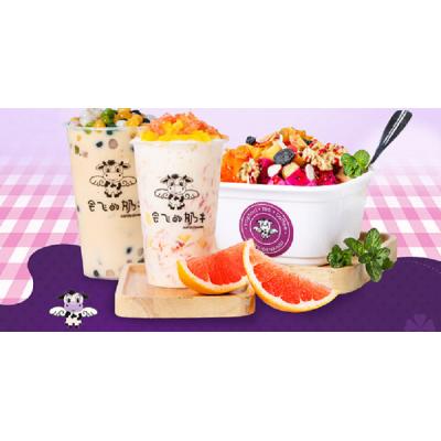 宜宾奶茶原料技术指导酸奶水果奶茶店配料冰淇淋供应