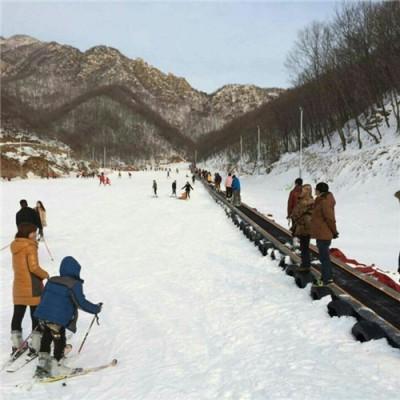 雪地输送设备厂家 运输魔毯配置结构