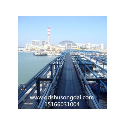 装车输送机 专业防滑式大倾角输送机设备 青岛联众输送机