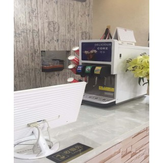 安阳可乐饮料机汉堡店可乐机器