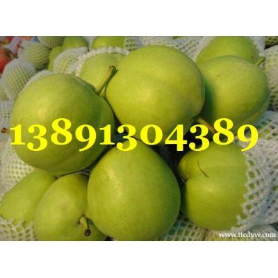 陕西早酥梨基地\早酥梨产地\六月酥梨批发最新价格