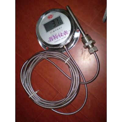 DTM-491数显温度计