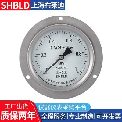 布莱迪YA-60B氨用压力表