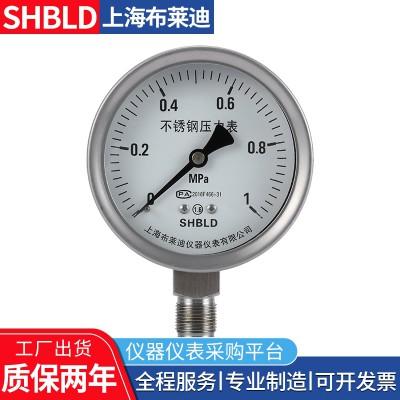 布莱迪YA-150/YA-15B氨压力表