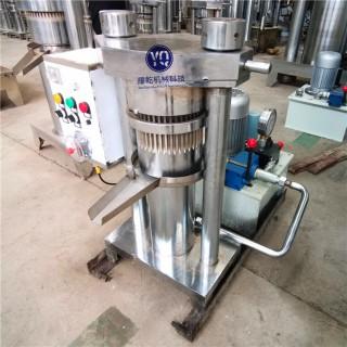 液压榨油机 立式核桃芝麻香油机 电动芝麻花生大豆榨油设备
