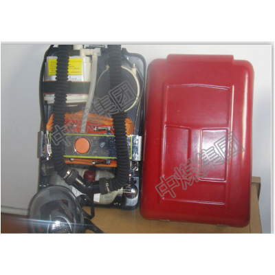 呼吸器  氧气呼吸器  氧气呼吸器价格  氧气呼吸厂家