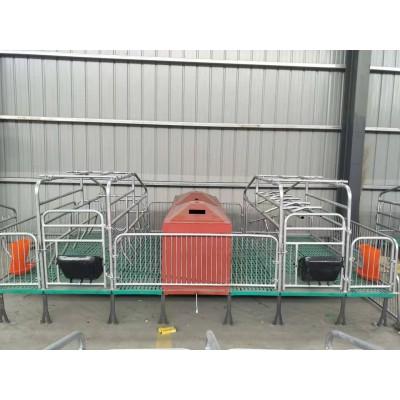 吉牧专供畜牧设备 产床保育设备