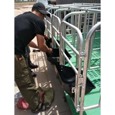 猪用限位栏加工 母猪限位栏 全复合板限位栏订做 吉牧